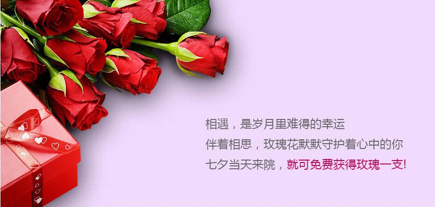 上海华美整形七夕活动之一 :七夕当天来院,免费获得玫瑰一支;