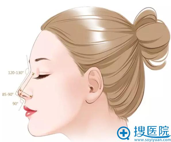 标准的鼻子