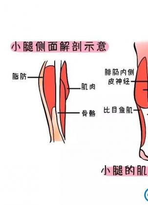 北京悦丽汇医疗美容周宜国医生注射肉毒素瘦腿针真人案例