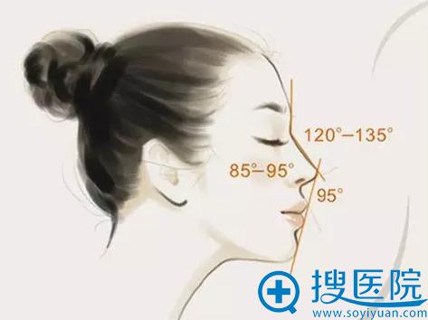 完美的鼻子角度