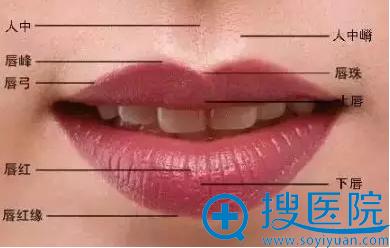美唇的标准