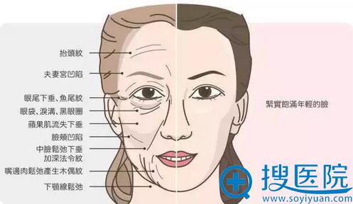 年轻与老化的脸对照