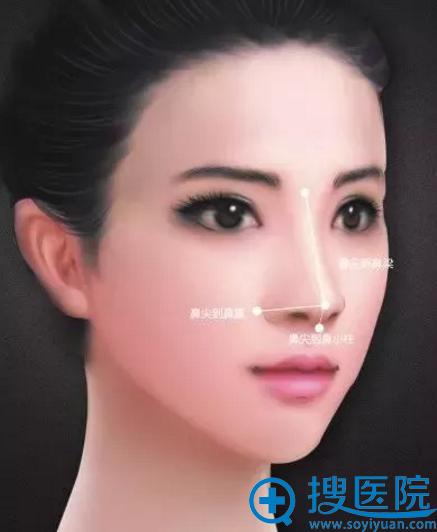 鼻部整形手术的核心要点