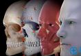 长沙爱思特2018年人体解剖示教与实操医师培训班即将开课