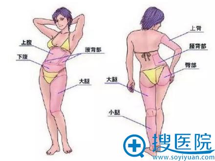 常见的吸脂部位展示