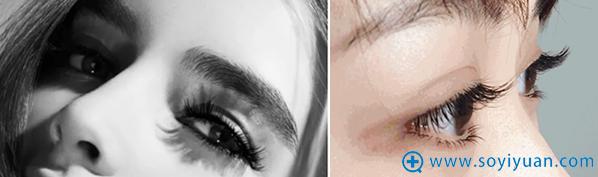 浓密卷翘的睫毛为颜值加分