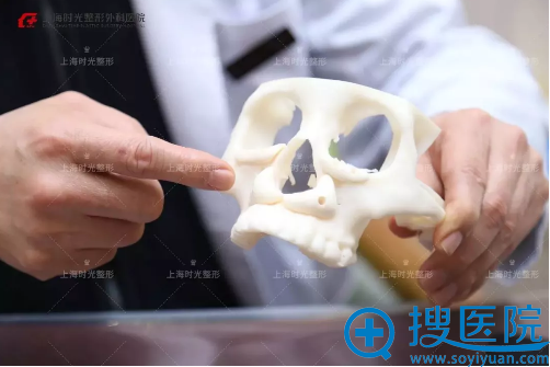 上海时光磨骨模型讲解