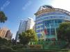 上海华山医院植发多少钱?看植发专科吴文育教授植发价格和案例