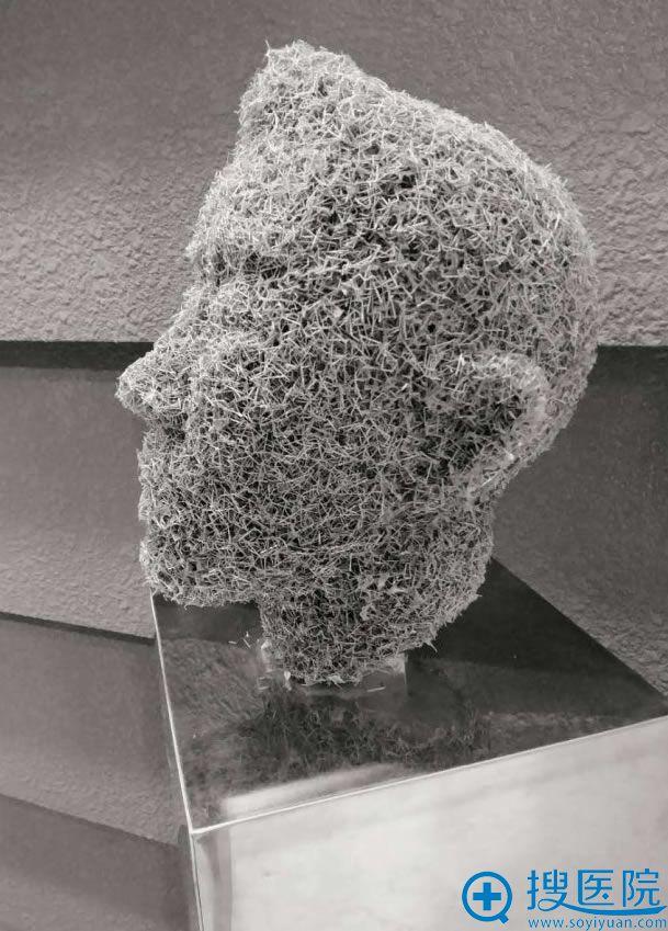 韩国金洞河院长的艺术品