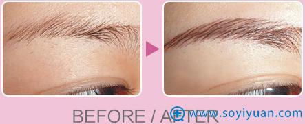 韩式半纹眉效果对比图