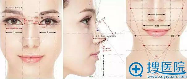 鼻综合整形手术设计考虑要素质