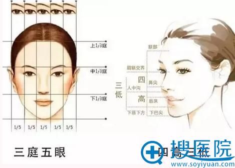郑州东方下巴设计美学标准