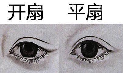 开扇和平扇双眼皮区别