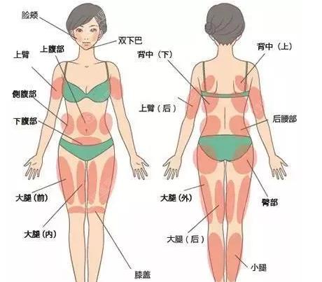吸脂手术部位示意图