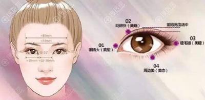 双眼皮美学审美标准